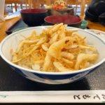 富山駅近くで食べた白エビ天丼